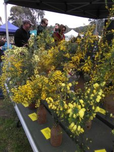 Hurstbridge Wattle Festival 2016